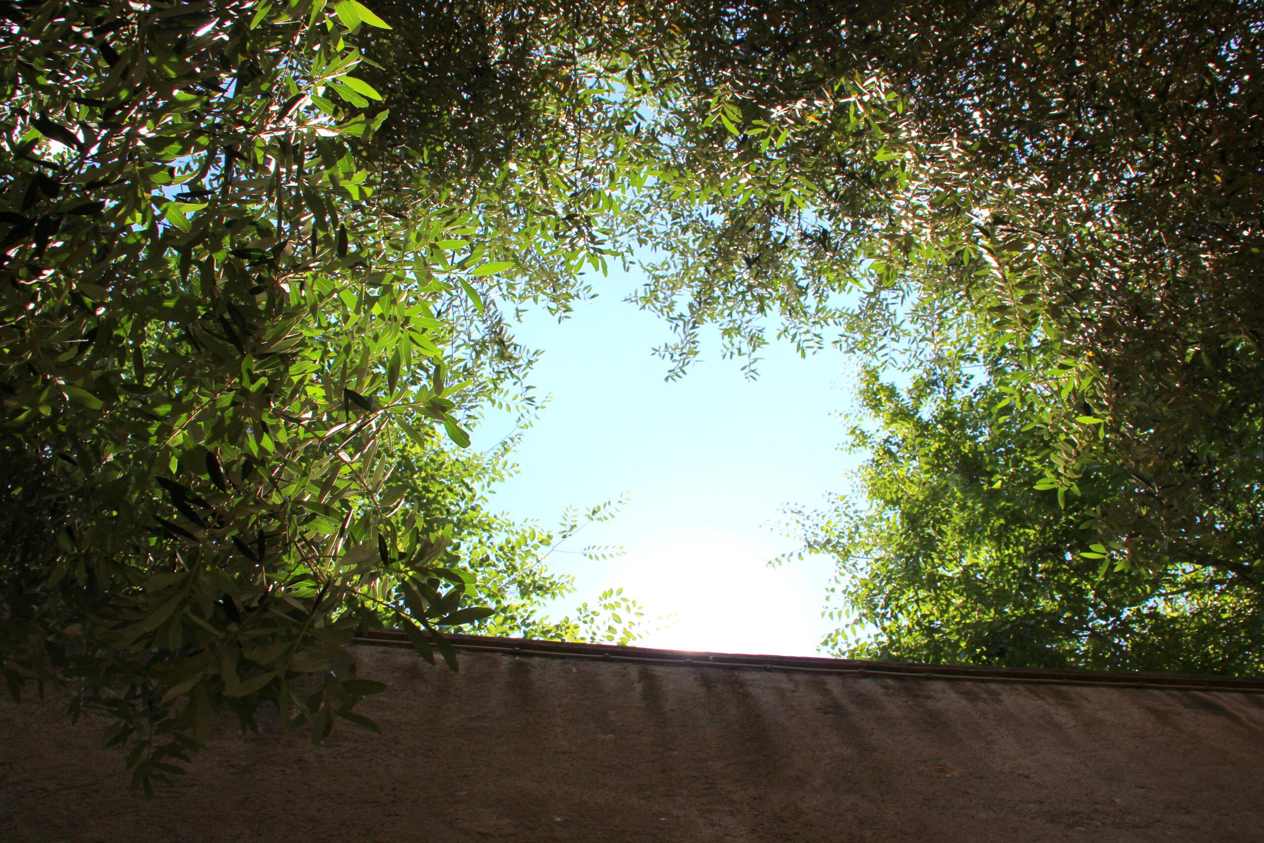 interrail-rooma